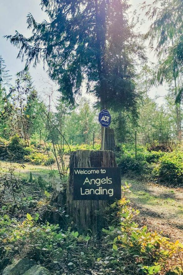 Port-Angeles-Vacation-Rental-Group-Family-Retreat-Forest-Hike